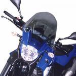 Ζελατίνα GIVI D433S Για Yamaha XT660R/X GIVYAMZEL03